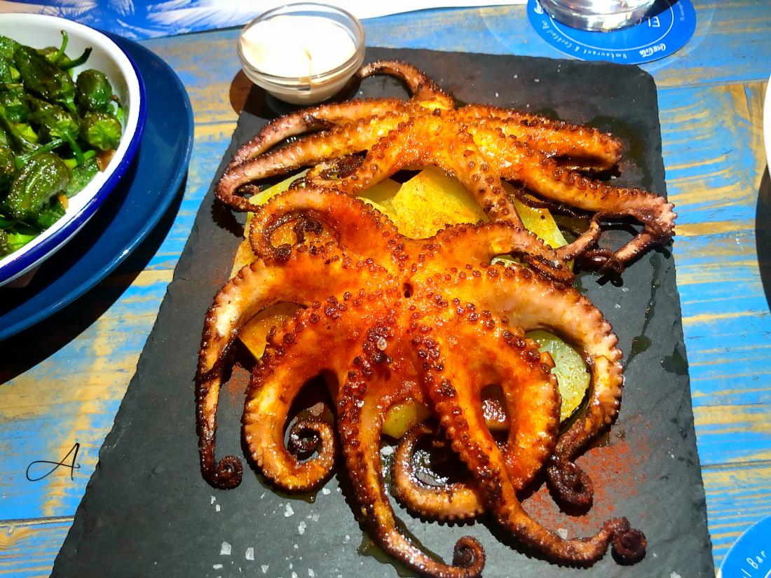 Kraken, pulpo pequeño