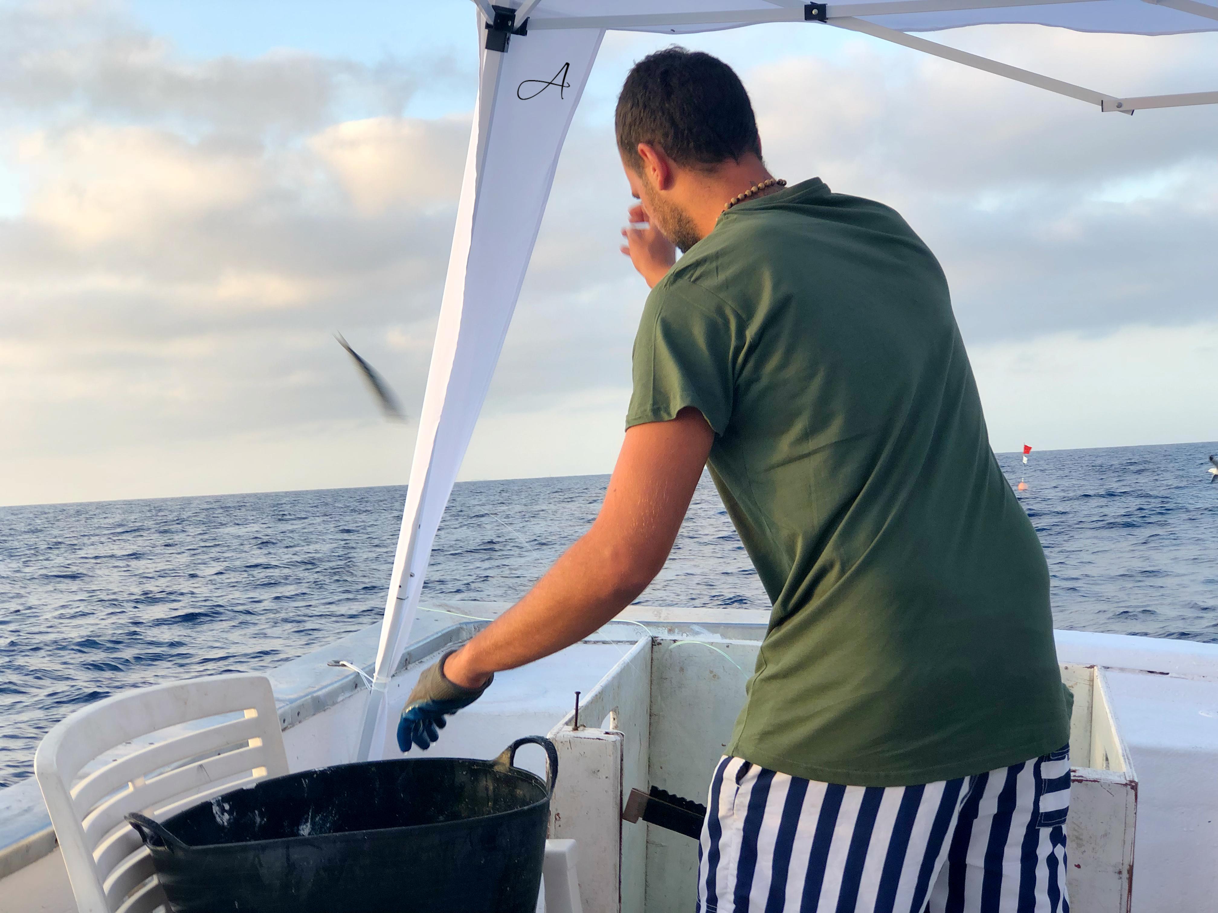 Pesca palangre